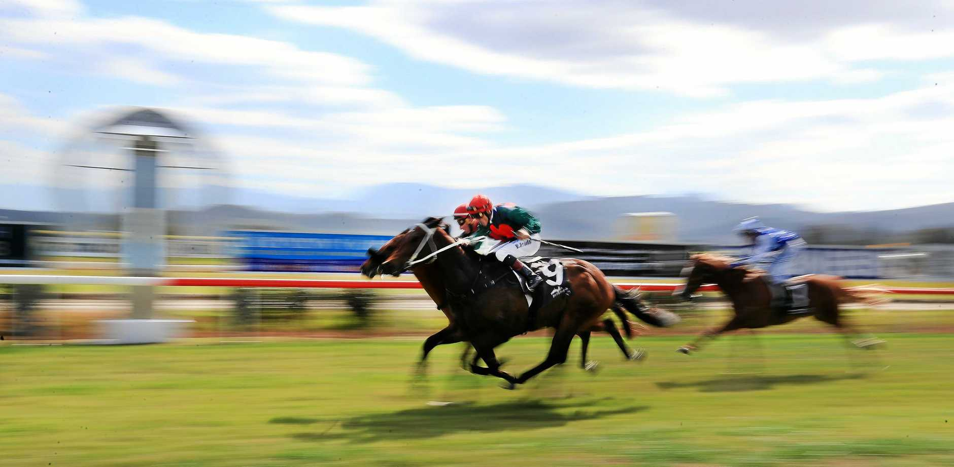 IN FORM:Matthew Dunn's Cubix was a winner at Tweed Valley Jockey Race day at Murwillumbah Races.