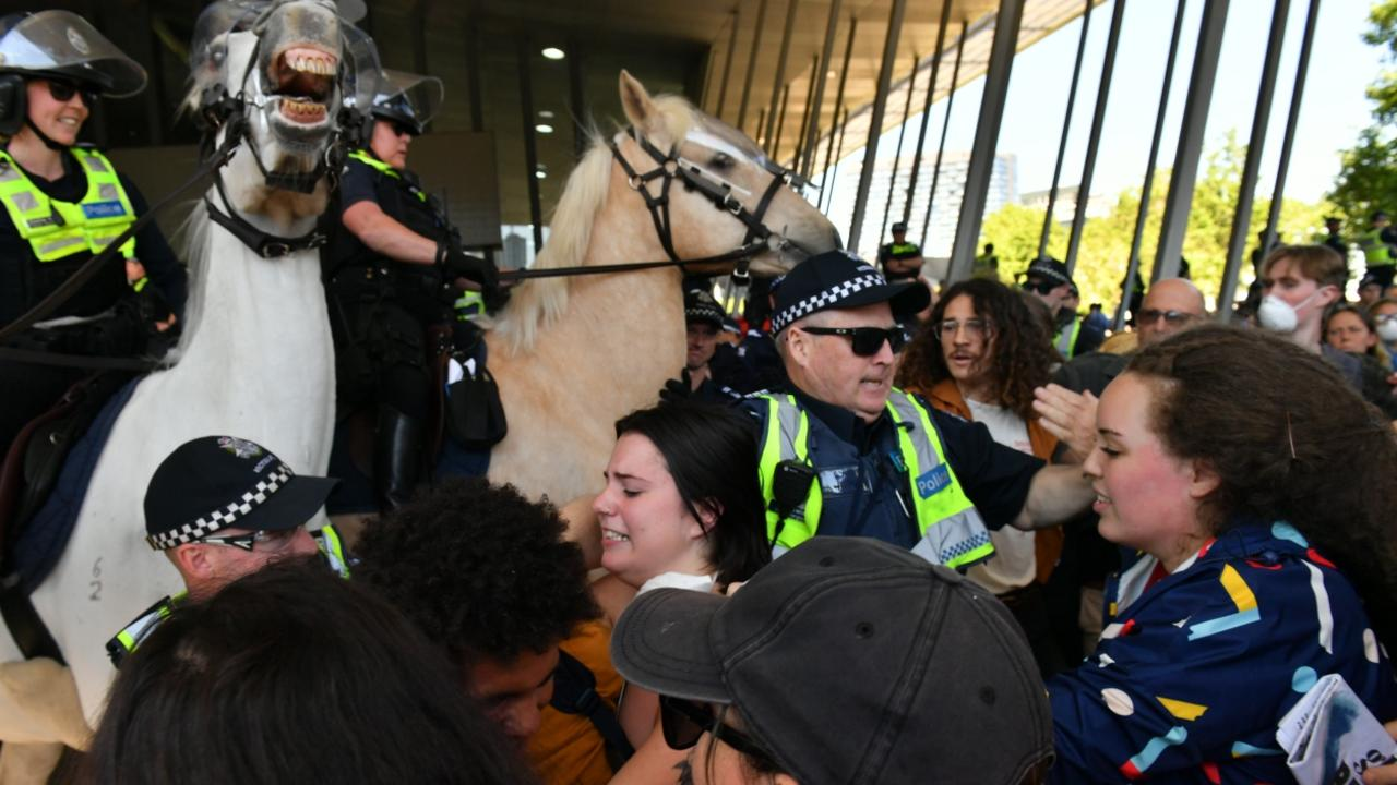 Two people were arrested after allegedly assaulting a police horse. Picture: Jake Nowakowski