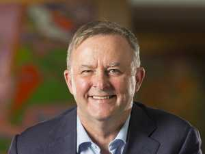 Albanese argues jobs exist in clean power
