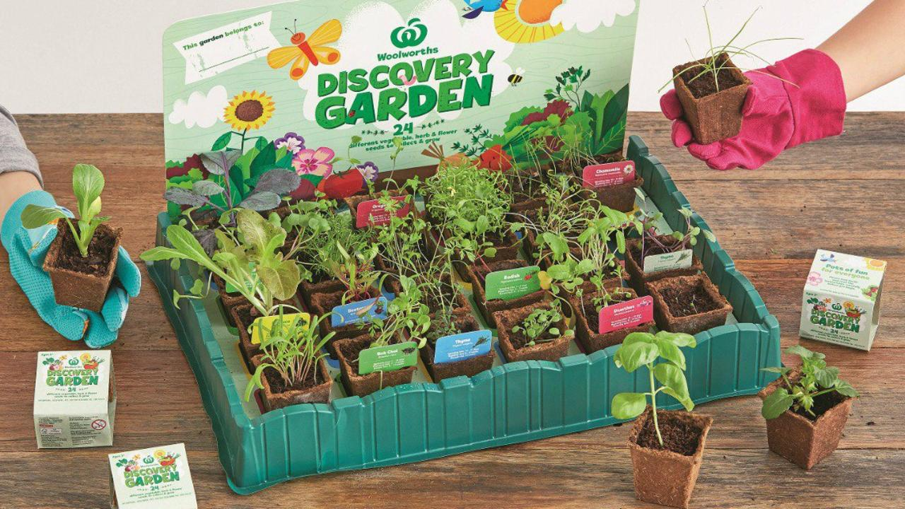 Developing green thumbs.