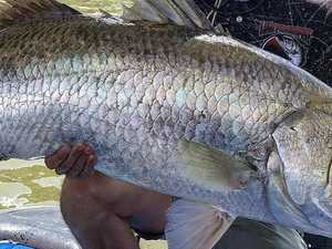 Fisho reels in first $10k barra for the season