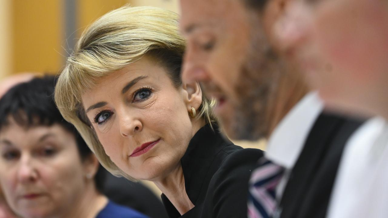 Employment Minister Michaelia Cash has defended the Jobactive system, saying it had achieved 1.4 million placements since July 2015. Picture: AAP