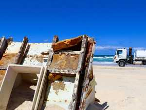 Dead dingoes inspire clean-up on Fraser Island