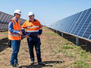 Race for sun: Why Adani celebrates renewable energy
