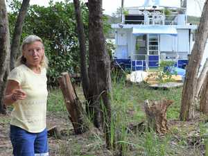 Foreshore tree cull at 'rare' Noosa gem enrages residents