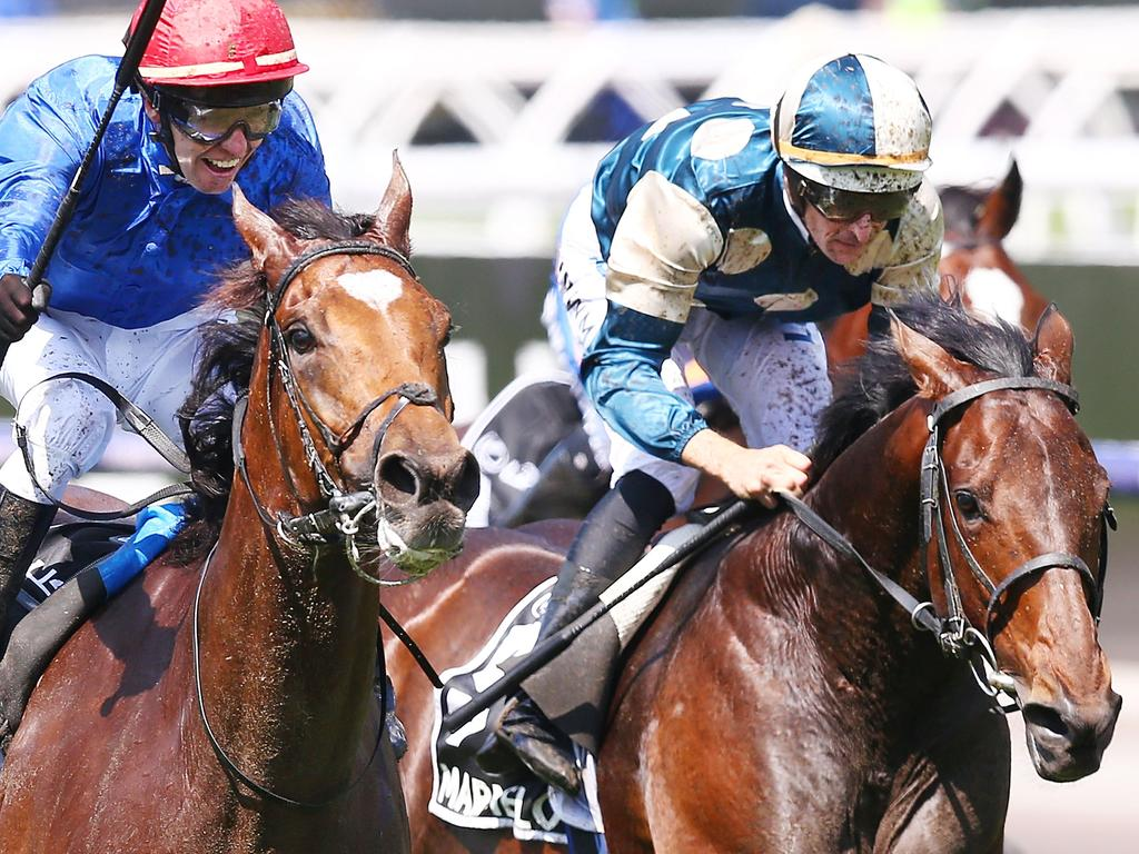Cross Counter (left) takes out last year's Melbourne Cup from Marmelo.