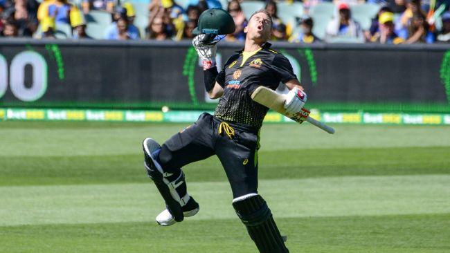 David Warner dominated against Sri Lanka. Picture: AFP Photo