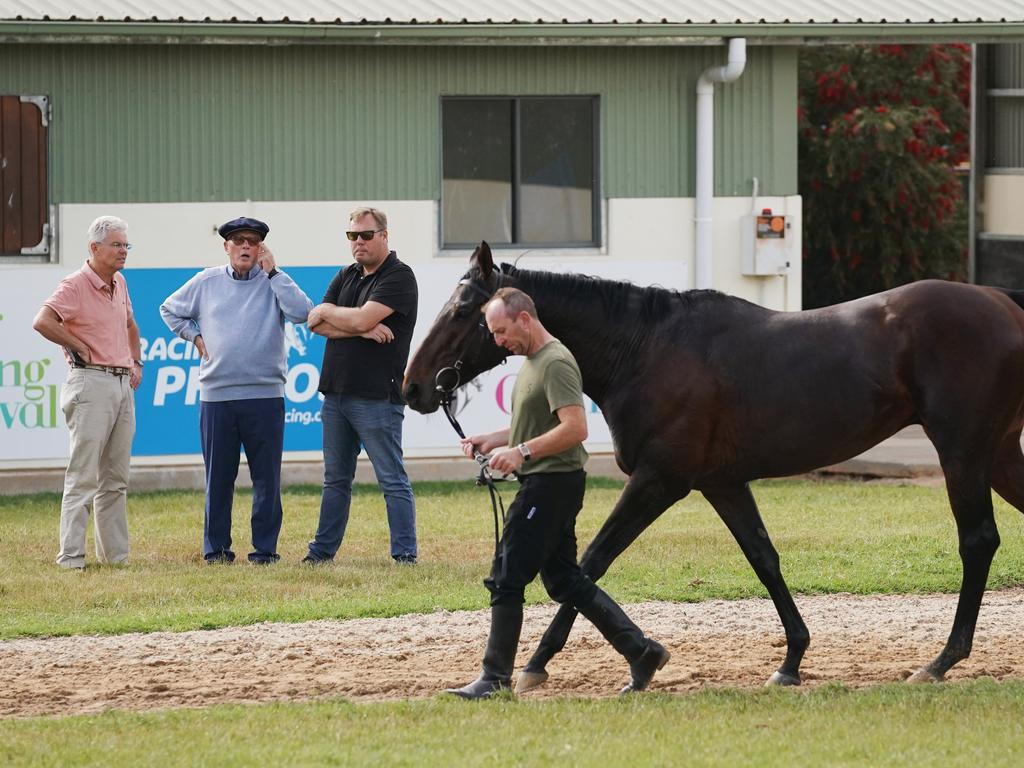 Marmelo cools down as Morrison talks to Lloyd and Nick Williams (right) at the Werribee International Horse Centre.