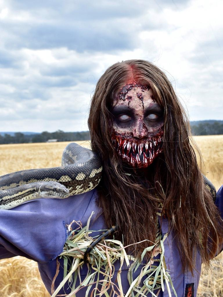 Monto hairdresser and makeup artist in training Cassie Stephan was selected as a finalist in QC Makeup Academy's Halloween Makeup Contest for her 'Possessed Scarecrow' look modelled on her sister Hannah.