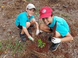 Students reap bush tucker harvest