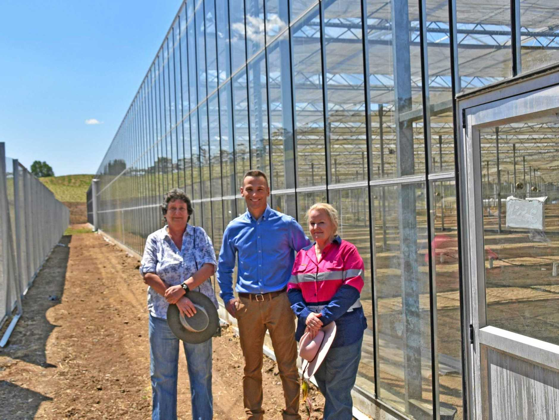 CANNABIS FACILITY: Lismore City Council Deputy Mayor Darlene Cook, Operations Manger of CannaPacific Tim Ritchie and Lismore City Council General Manager Shelley Oldham.