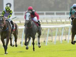 Catch the Melbourne Cup action on track in Coffs