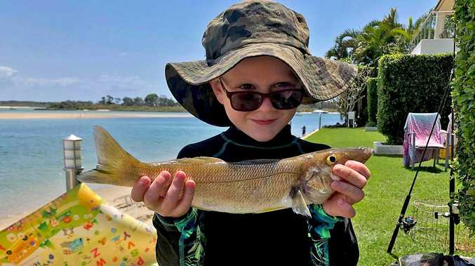 Reeling them in off Noosa reefs after the big blows