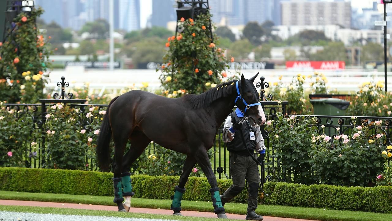 Caulfield Cup winner Mer De Glace is off to the Melbourne Cup. Pic: Getty Images