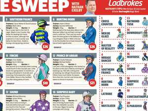 Download your Melbourne Cup sweep here