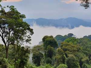 Rwanda a refreshingly different experience of Africa