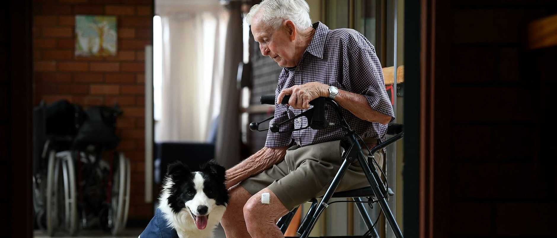 Molly is a part of Creature Comforts, a new wellbeing program run by not for profit aged care provider Whiddon.  For many residents like Ray Shephard, Molly's company means the world.