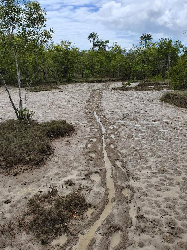 The environmental organisation shared a photo of a croc print taken just south of Mackay. YIKES!