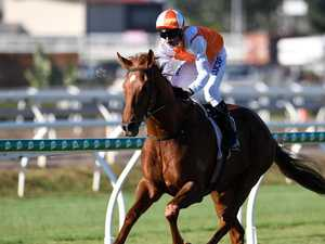Coast owners thrilled as Vow and Declare wins Melbourne Cup