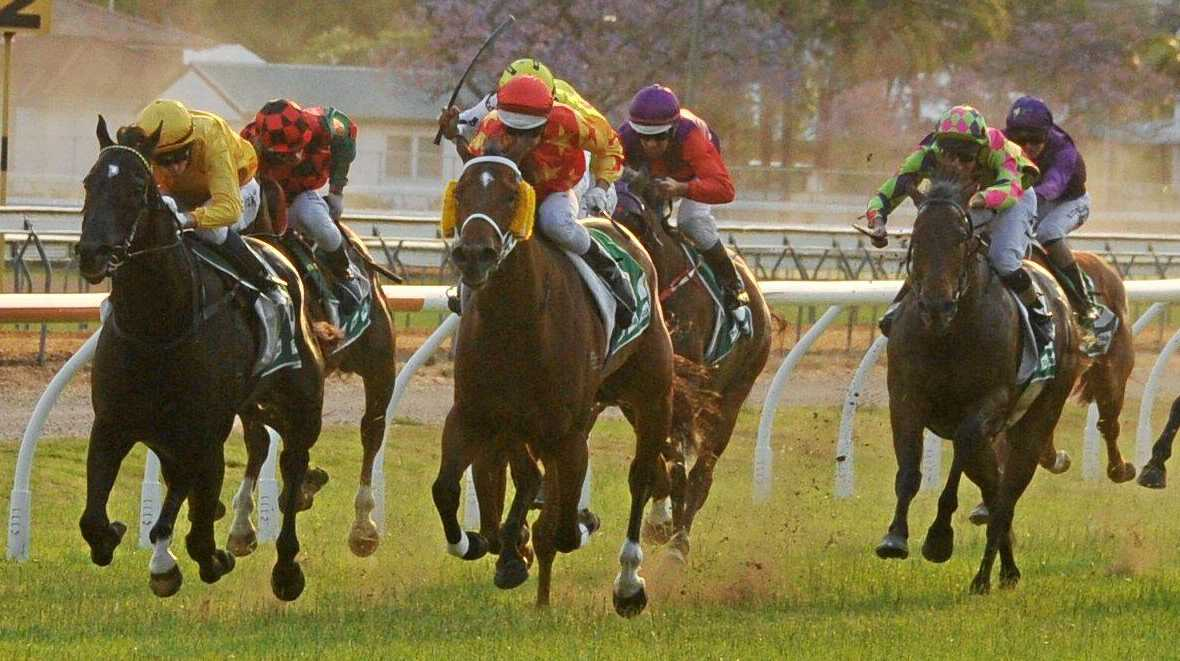 TIGHT CONTEST: Toby and Trent Edmods-trained Dream Master (far left) and Lindsay Hatch-trained Jadentom (second from left) go head-to-head down the stretch before Jadentom took a late lead to win the Jacaranda Cup on Wednesday.