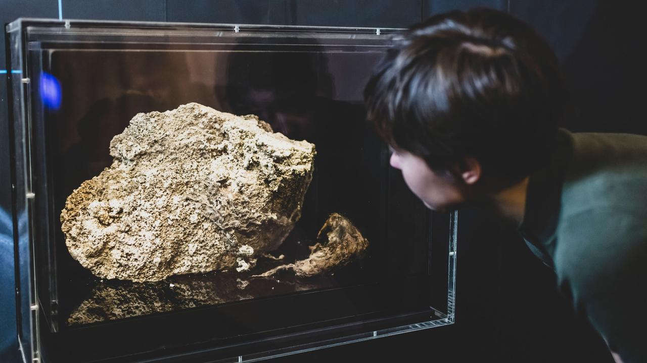 Fatberg in Melbourne Museum
