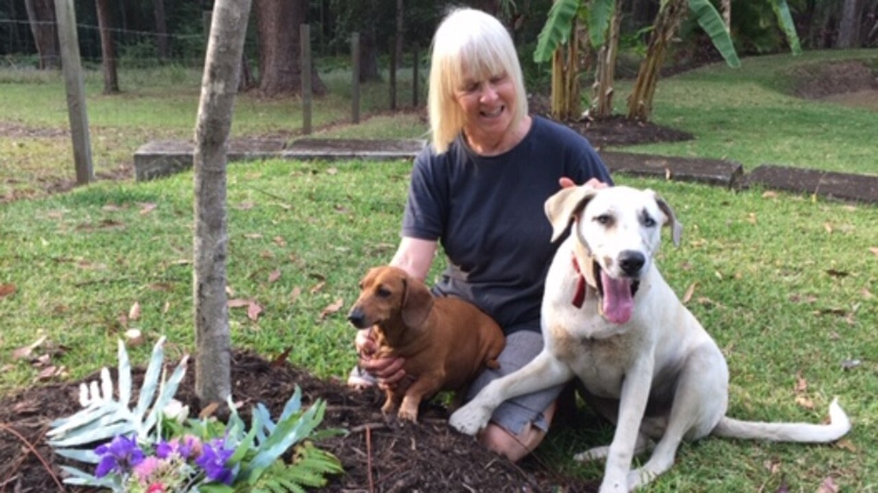 HELPING HAND: Bronwyn Innes is helping dogs impacted by the current drought crisis by helping rehome and feed them here on the Sunshine Coast. Here she is pictures with Poppy (left) and Harley Quinn.