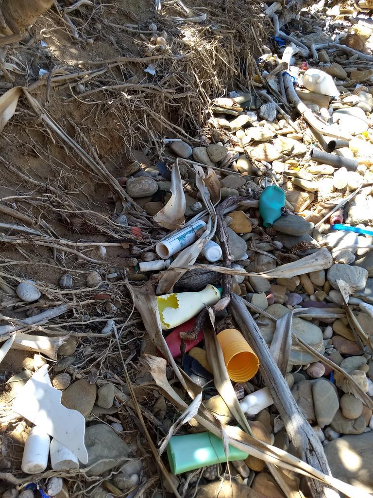 Marine debris retrieved around Stone Hut on Curtis Island