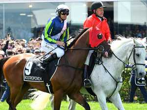 Emotional reunion with injured Cup horse