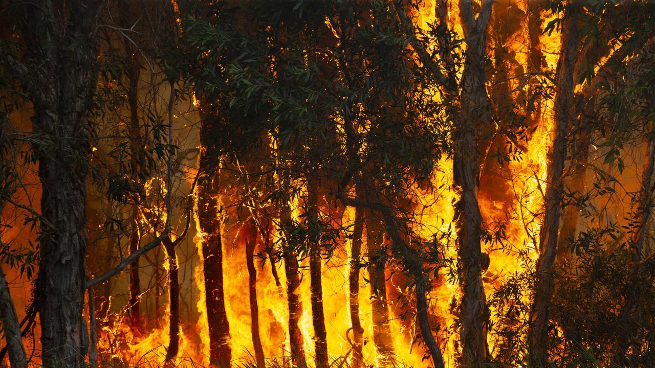 Twenty one local fire crews are at a bushfire burning at Yandaran.