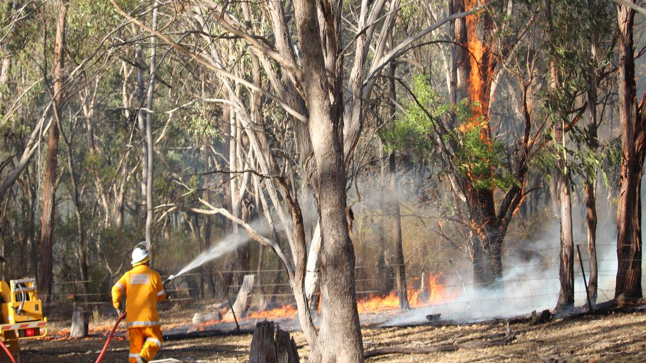 QFES has im implemented a total fire ban in national parks and forests. Picture: Liana Walker.