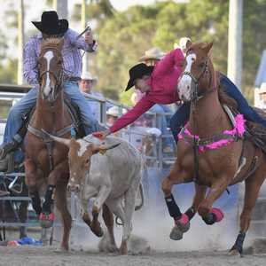 Rodeo, Utes and Music at the Maryborough Showgrounds - Fraser Coast Chronicle