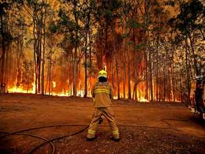 GALLERY: Shocking images show bushfire devastation