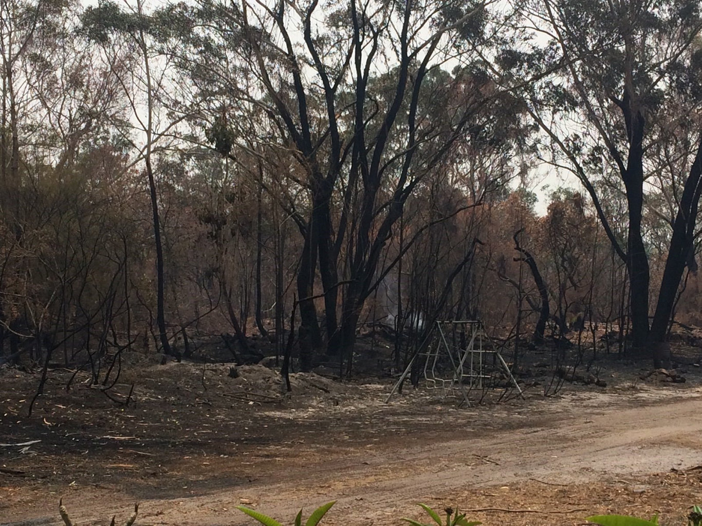 Damage from fires at Wardell.