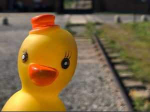 Influencer in trouble over duck pic