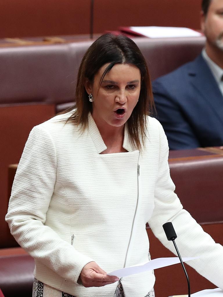 Senator Jacqui Lambie speaking at Parliament House in Canberra.