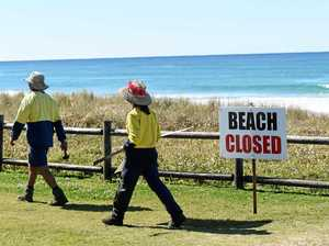 Popular beach closed after shark sighting