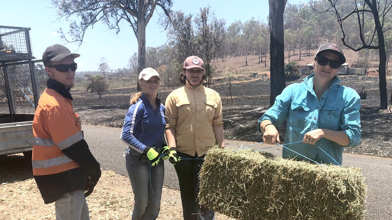 Yeppoon volunteers Steven and Brooke Johnson help Boston Bayliss and Chantelle Fielding deliver stock feed to animals in burned paddocks on Mt Rae Road