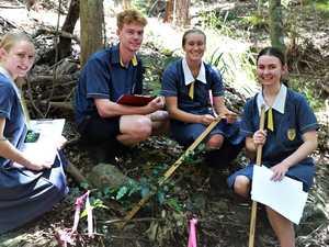 Students enter rainforest to save endangered plant species