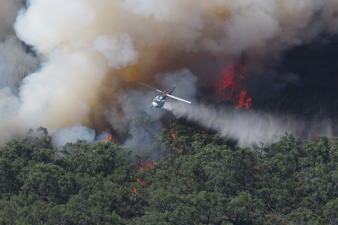 A photo of an aerial water bomber fighting the Black Saturday fires in 2009.