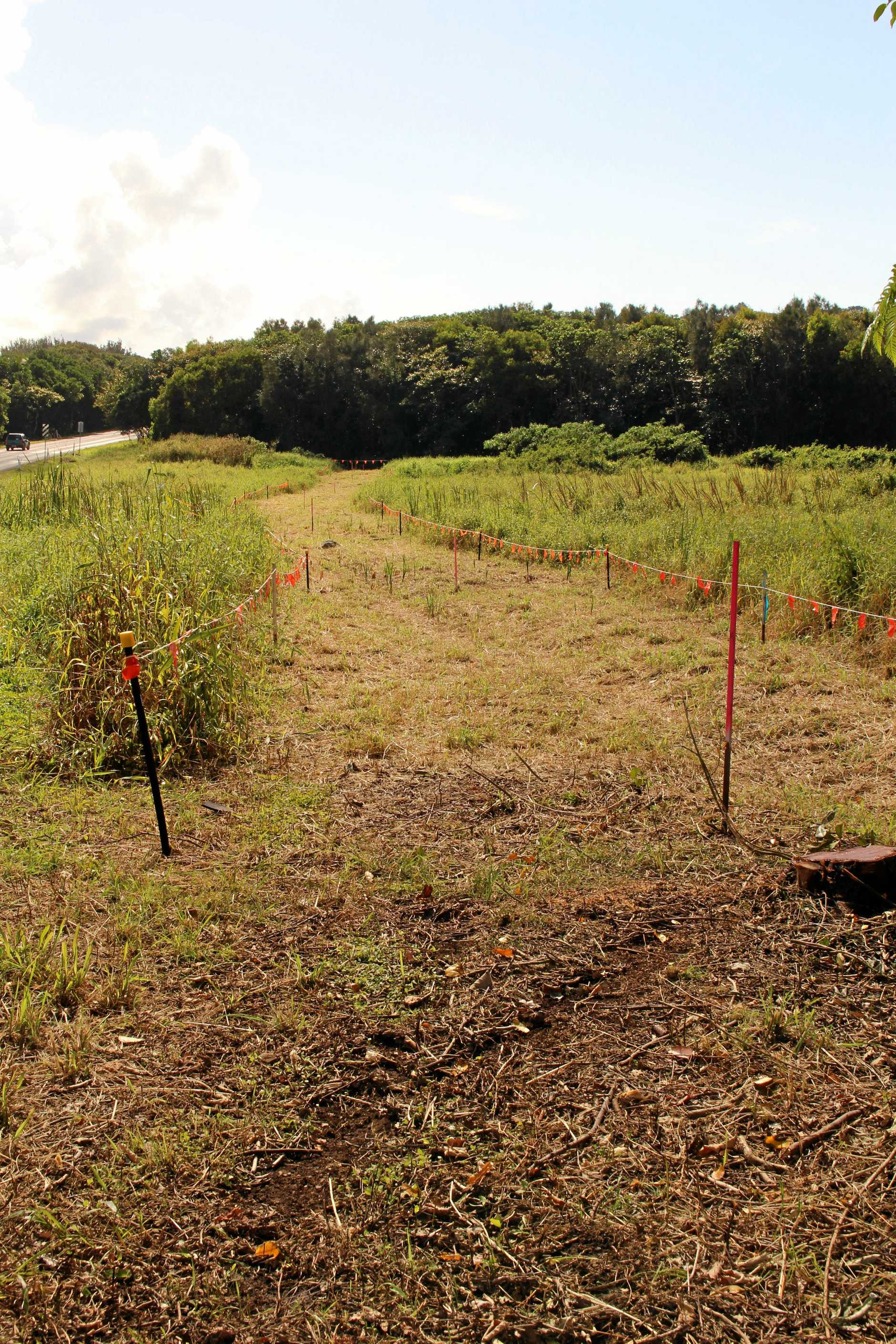 Ballina Shire Council had begun works on the final stretch of the  Coastal Shared Path between the Skennars Rd roundabout and Pat Morton Lookout at Lennox Head.