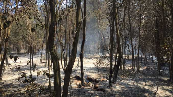 Firefighters 'hopeful' about Pechey fire fight