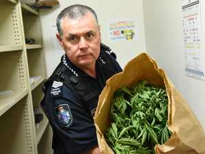 'Baptism of fire': new Gayndah sergeant's drug crop raid
