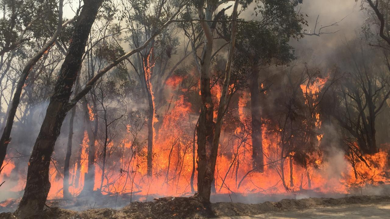 Fires continue to burn across the state. Picture: Savannah Chibnall