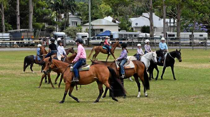 Retired racehorses get second chance at gold