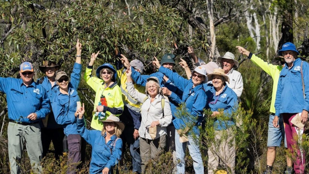 BRANCHING OUT: Bush carers at the site of the stand of rare stringybarks. Picture: Contributed