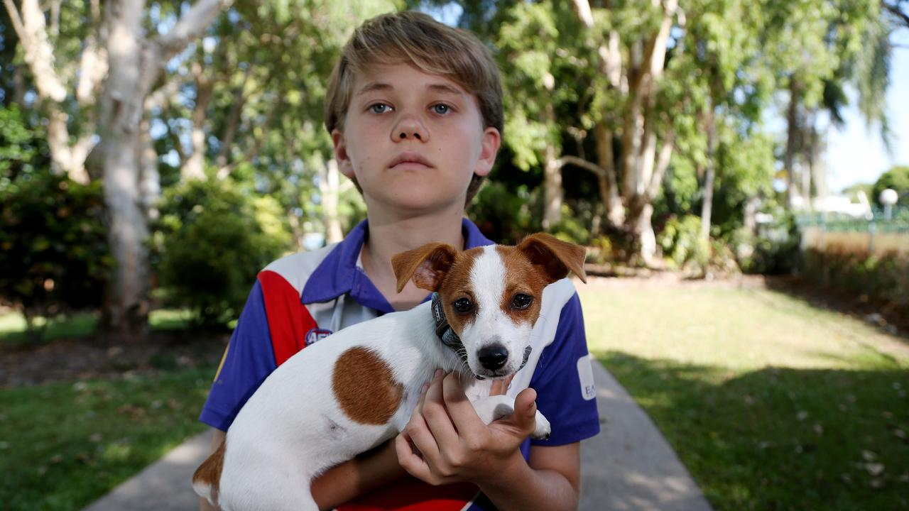 Councillor Brett Olds' 13-year-old son Tristan Olds and his 16-week-old Jack Russell pup Mya were attacked by a dog at Kewarra Beach. PICTURE: STEWART MCLEAN