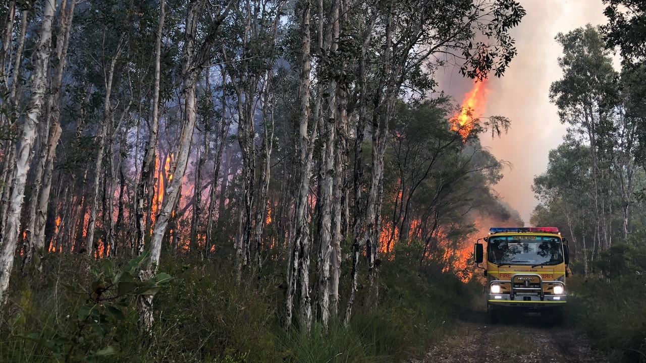 A rural brigade truck traverses a narrow path among the flames at Noosa North Shore this week.