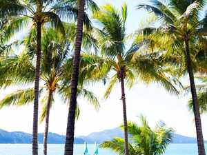 Dream jobs up for grabs on island paradise