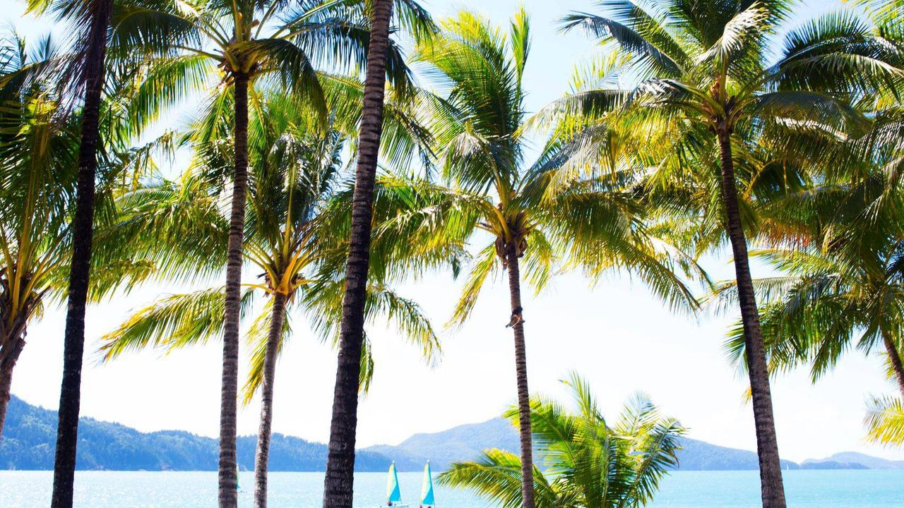 Hamilton Island is currently recruiting for 40 roles on the internationally acclaimed holiday destination.