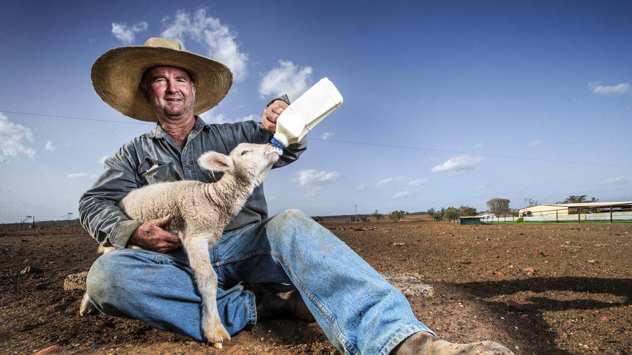 Western Queensland grazier Will Roberts bottle feeding one of his poddy lambs on his drought hit property north-east of Charleville. Picture: Lachie Millard